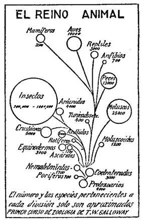 Fundamentos primeros de la Teosofía, por C. Jinarajadasa 1912 5