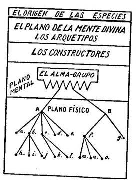 Fundamentos primeros de la Teosofía, por C. Jinarajadasa 1912 44
