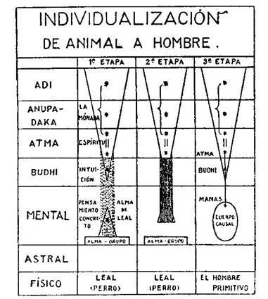 Fundamentos primeros de la Teosofía, por C. Jinarajadasa 1912 46