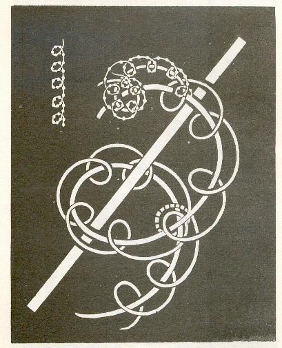 Fundamentos primeros de la Teosofía, por C. Jinarajadasa 1912 53