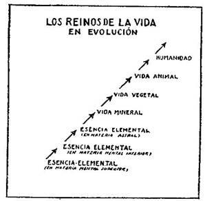 Fundamentos primeros de la Teosofía, por C. Jinarajadasa 1912 55