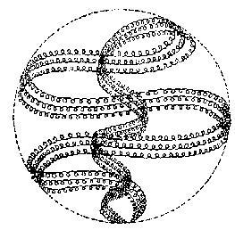Fundamentos primeros de la Teosofía, por C. Jinarajadasa 1912 63
