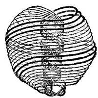 Fundamentos primeros de la Teosofía, por C. Jinarajadasa 1912 84