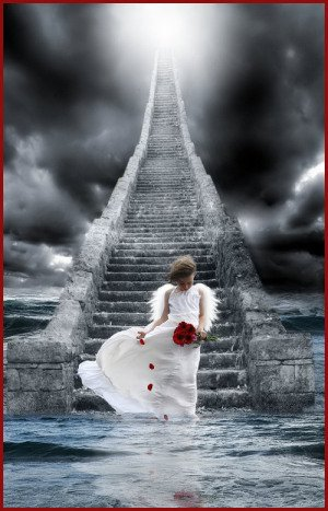 El angel al principio del camino