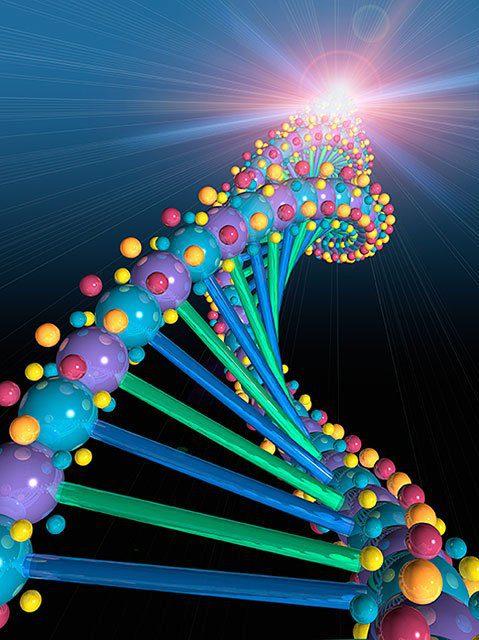 Helice de ADN