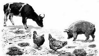 Cerdos Vacas