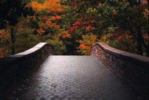 Paseo a travez del otoño en Boston por Mark Dela Cruz
