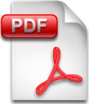 ICON pdf 2