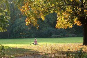 Meditación: Uniendo Corazones