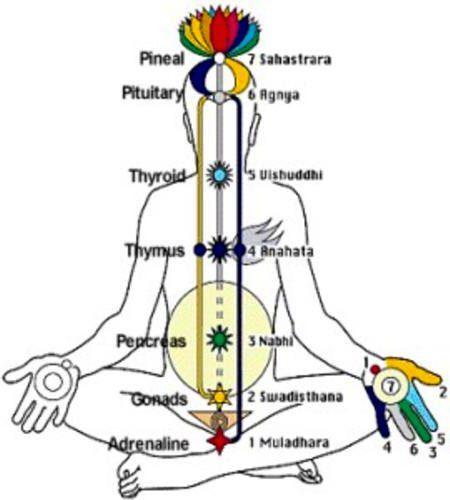 Chakras en hombre meditando