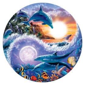 GAIA delfines naturaleza