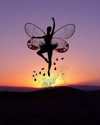 Mariposa ascension