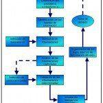 La Organización Inteligente. Para líderes mundiales. 1
