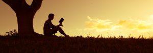 lecturas positivas para el verano ii