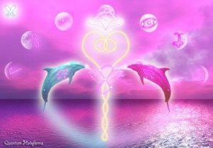 Delfines4