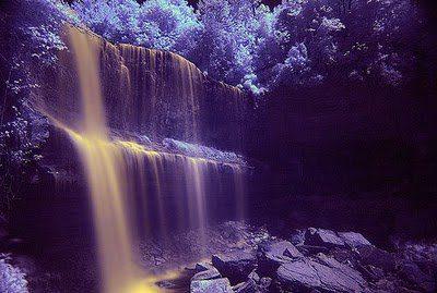 cascada lila