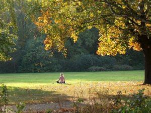 meditacion-en-la-naturaleza1