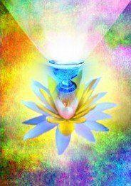 Medita Jc 31 Poderoso Mantra de Purificación y Perfección: OM MANI PADME HUM