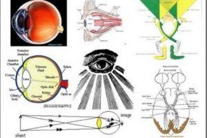 Conexión integral entre la percepción ocular, la magnetosfera, la ionosfera y las tormentas solares.