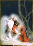 Angel-Con-Jesus