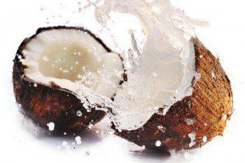 Coco Agua de Coco: Propiedades Nutritivas y Medicinales