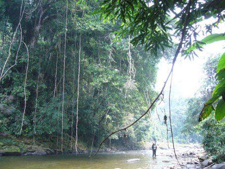 Expedición a Paititi 8 al 22 agosto de 2010, informe de Elyah Aram 12