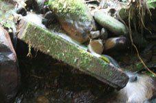 Expedición a Paititi 8 al 22 agosto de 2010, informe de Elyah Aram 18