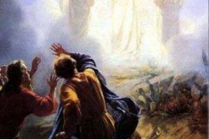 Cómo se expande la conciencia con la transfiguración