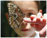 niña-con-mariposa