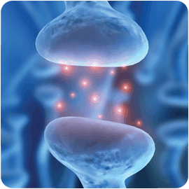 serotonina hermandadblanca.org