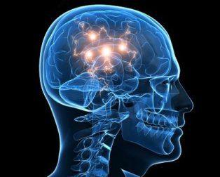 cabeza cerebro  con energia hermandadblanca.org
