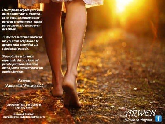 caminando sol dorado hermandadblanca.org