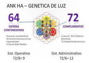 Las Redes: la genética del Universo. Por los sirianos. 3