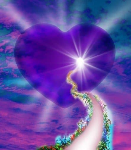 el camino del corazon