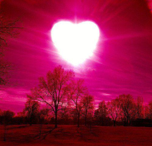 corazon en fondo rosa