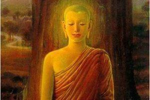 """""""Vayamos siempre por la Luz"""", palabras del Sr. Buda"""