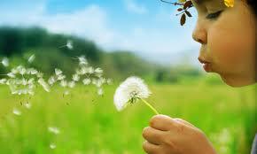 vida niño con flor