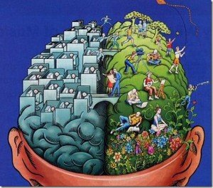Plataforma codes - principiantes cerebro creatividad