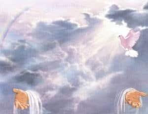 cielo celestial com palomas