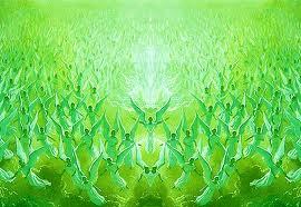 ángeles del arcangel rafael