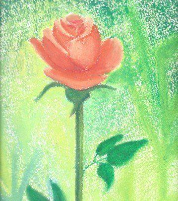 rosa pintada en acuarela