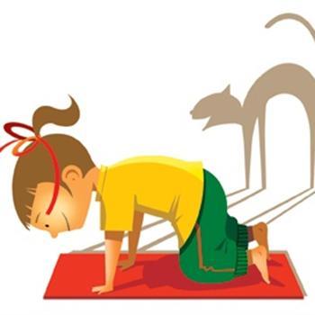 yoga_gato