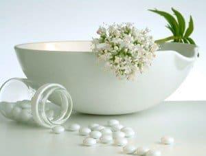 La salud y las plantas medicinales