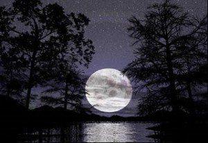 Luna Noche