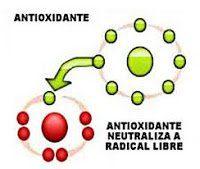 antiox-hierbas aromáticas
