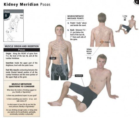 meridiano vascular sofia randall