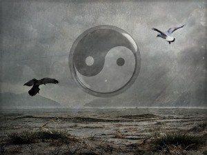 el ying y yang con dos pájaros volando