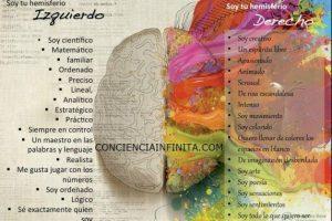 Neuropsicología y Educación