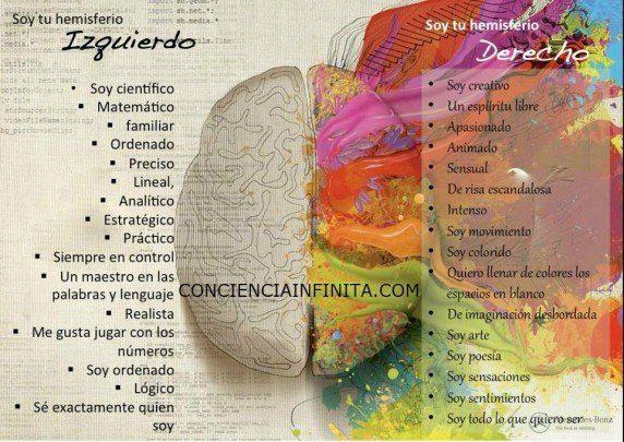 hemisferios-cerebrales-572x405
