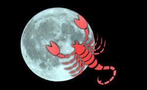 rec3 meditacion noviembre 2013 luna llena de escorpio soy el guerrero